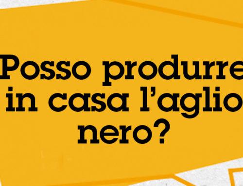 [Domande & Curiosità] FAQ #3: Posso produrre l'aglio nero in casa?